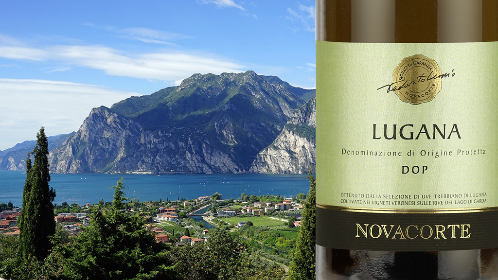 Label of Lugana DOC Novacorte, white wine by Domus Vini Winery